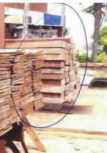 6 Anderes Holz In Der Längsrichtung Gesägt Oder