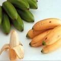 banány; žluté; ovoce; poživatelný (jedlý); čerstvé; malé; zelené