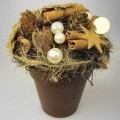"""""""Zimttöpfchen"""" - aus einem Pflanztopf aus brauner Keramik (Terrakotta lt. Antragsteller) mit eingeklebtem    Styroporkorpus, der vollständig mit Rebenzweigen, verdrahteten Zimtstangen..."""