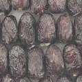 Datteln, zubereitet.  Antragsangaben (als zutreffend unterstellt): Datteln, gefüllt mit Meerrettich-Frischkäse, gekühlt. Zur Zusammensetzung der Ware wurden vertrauliche Angaben gemacht. Verpackungseinheit:...