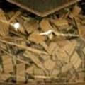 madera; roble