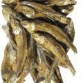 upraveno pro drobný prodej; ryby; sušeno; nevhodné pro lidskou…