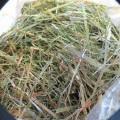 byliny; sušeno; pro krmení zvířat; trávy; rostlinné produkty