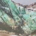 цвят; зелен; естествен
