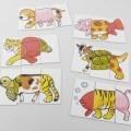 bedruckt; aus pappe; für kinder; spielkarte; karte