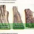 legno; noci; segato; piallato