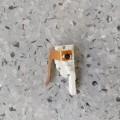 elektrisch; kabel; stange; motor; gleichstrommotor; getriebe;…